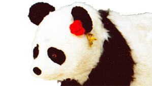 パンダのヤンヤン2